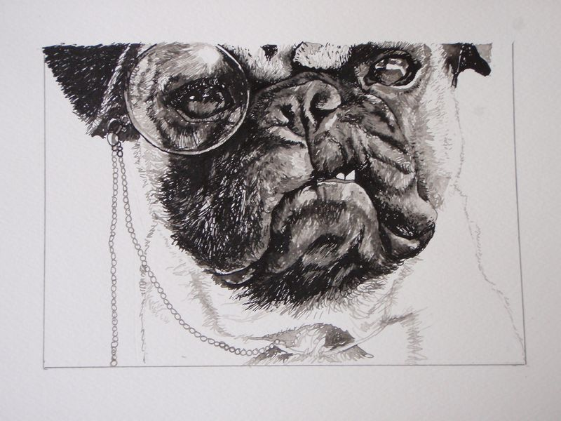 Dogs with glasses 003