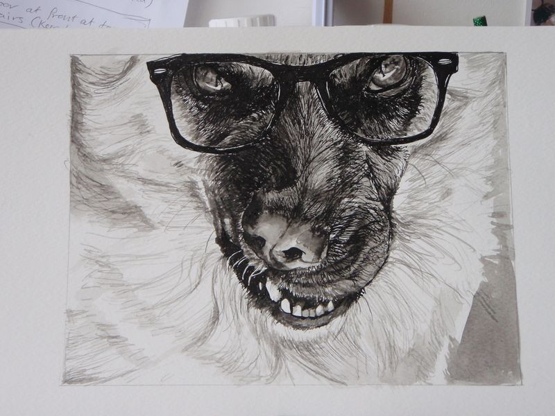 Dogs in specs 003