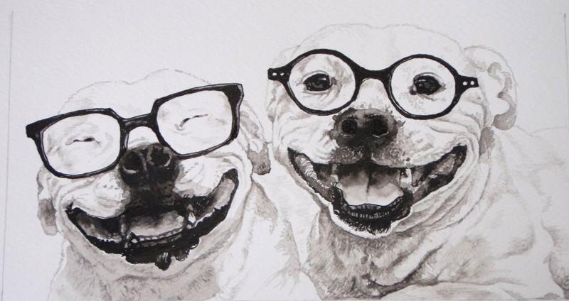 Dogs in specs 029